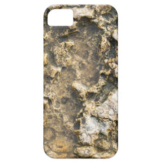 Overhead view at the fragment of natural backgroun iPhone SE/5/5s case