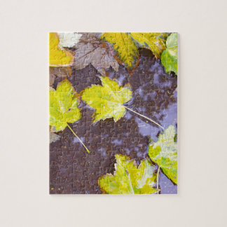 Overhead view of a wet autumn maple leaves closeup jigsaw puzzle