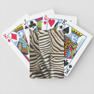 Overhead view of Burchell's Zebra Bicycle Playing Cards