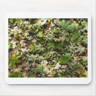 Overhead view of the green fallen maple leaves mouse pad