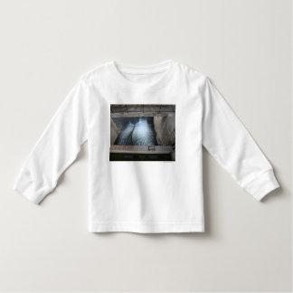 Overholser Dam Toddler T-shirt