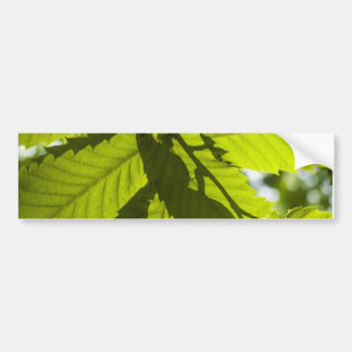 Overlapping leaves bumper sticker