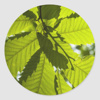 Overlapping leaves classic round sticker