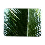 Overlapping Palm Fronds Flexible Magnet