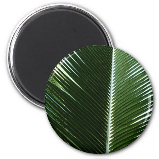 Overlapping Palm Fronds Tropical Green Abstract 2 Inch Round Magnet