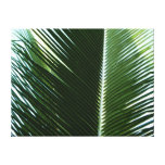Overlapping Palm Fronds Tropical Green Abstract Canvas Print