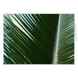 Overlapping Palm Fronds Tropical Green Abstract Card