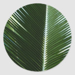 Overlapping Palm Fronds Tropical Green Abstract Classic Round Sticker