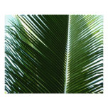 Overlapping Palm Fronds Tropical Green Abstract Photo Print