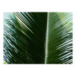 Overlapping Palm Fronds Tropical Green Abstract Poster