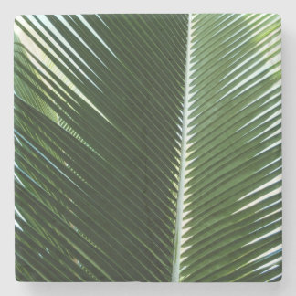 Overlapping Palm Fronds Tropical Green Abstract Stone Coaster