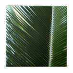 Overlapping Palm Fronds Tropical Green Abstract Tile