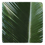 Overlapping Palm Fronds Tropical Green Abstract Trivet