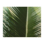 Overlapping Palm Fronds Tropical Green Abstract Wood Print