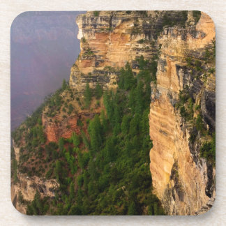 Overlook at Grand Canyon National Park Coaster