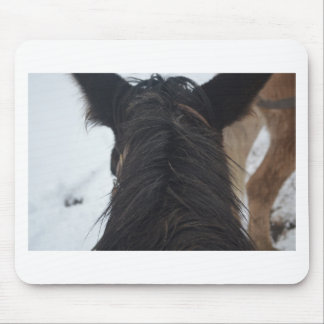Overlook Grand Canyon National Park Mule Ride Mouse Pad