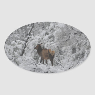 Overlook Grand Canyon National Park Mule Ride Oval Sticker