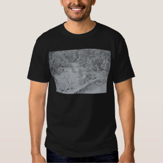 Overlook Grand Canyon National Park Mule Ride Tee Shirt