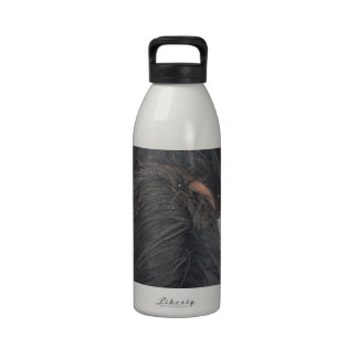 Overlook Grand Canyon National Park Mule Ride Water Bottles