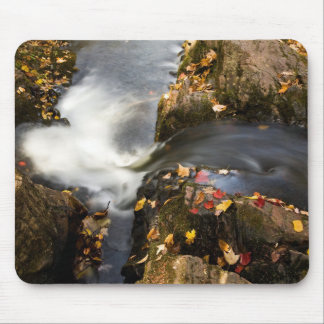 Overlooked Falls Detail Mouse Pad