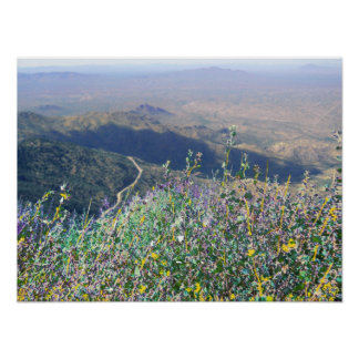 OVERLOOKING THE TOHONO O ODHAM RESERVATION SOUTHE PRINT