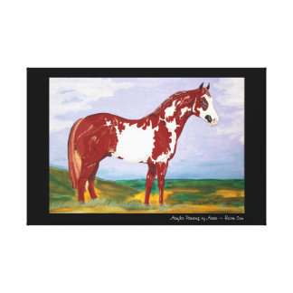 Overo Paint Stallion Canvas Print
