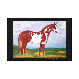 Overo Paint Stallion Canvas Print