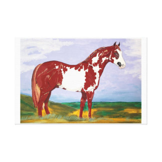 Overo Paint Stallion ~ Wrapped Canvas