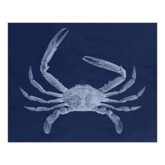 Oversized Crab Triptych in Blue Poster