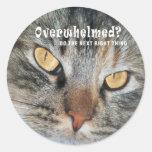 overwhelmed Nellie Round Stickers