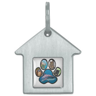 OVFA Cat Tag Pet ID Tag