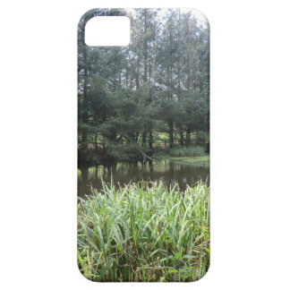 Owain Glyndŵr's Fishpond at Sycharth Castle iPhone 5 Covers