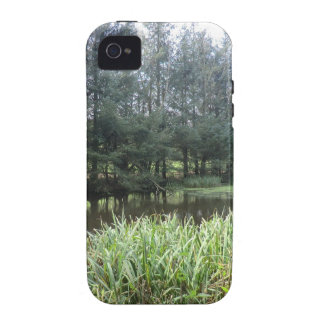 Owain Glyndŵr's Fishpond at Sycharth Castle Vibe iPhone 4 Covers