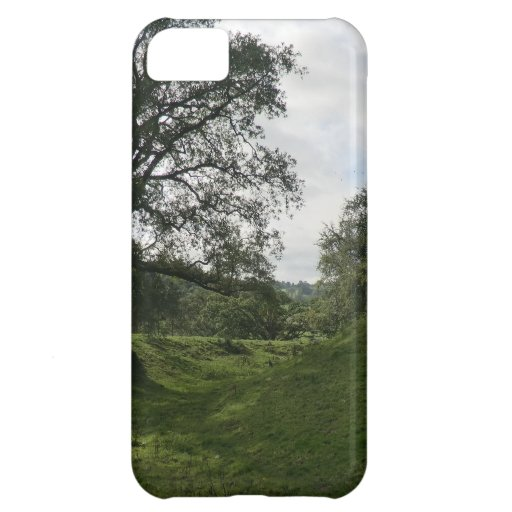 Owain Glyndŵr's Sycharth Castle, in Powys, Wales iPhone 5C Cases