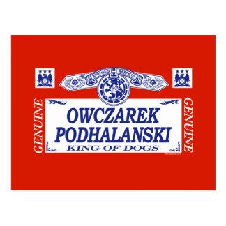 Owczarek Podhalanski Postcard
