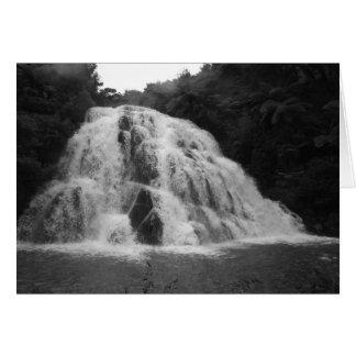 Owharoa Falls in Black and White Greeting Card