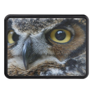 owl-15.jpg trailer hitch cover