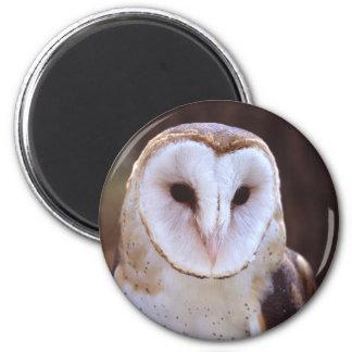 owl 2 inch round magnet