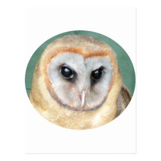 Owl 2 postcard