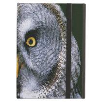 Owl 2 Powiscase iPad Air Case