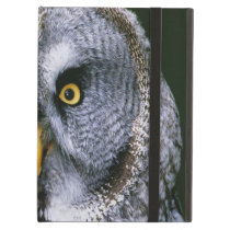 Owl 2 Powiscase iPad Air Covers
