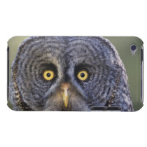 Owl 3 Case-Mate iPod touch case