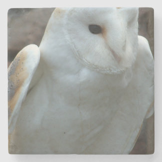 owl-51.jpg stone beverage coaster
