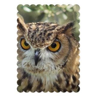 owl-54.jpg 5x7 paper invitation card