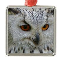 owl-62703_1920.jpg metal ornament
