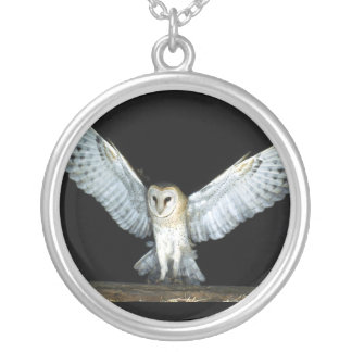 Owl (6) silver plated necklace