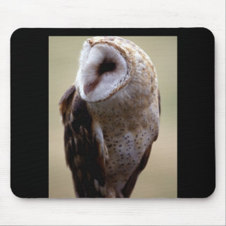 Owl (7) mouse pad