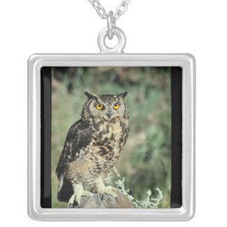 Owl (9) square pendant necklace