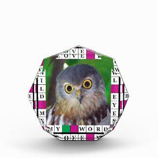 Owl-alishush Award