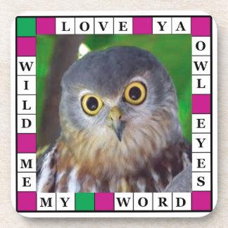 Owl-alishush Coaster